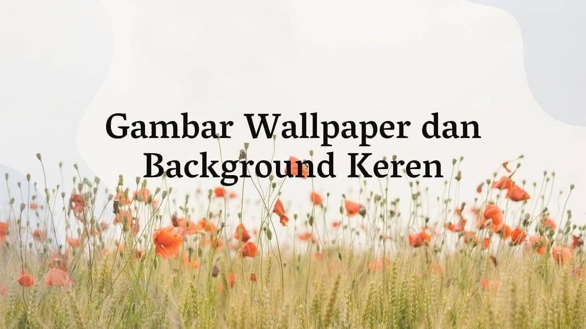50 Gambar Background Dan Wallpaper Keren Lucu Dinding