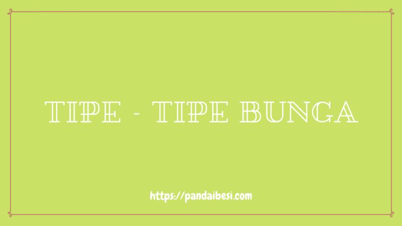Tipe - Tipe Bunga