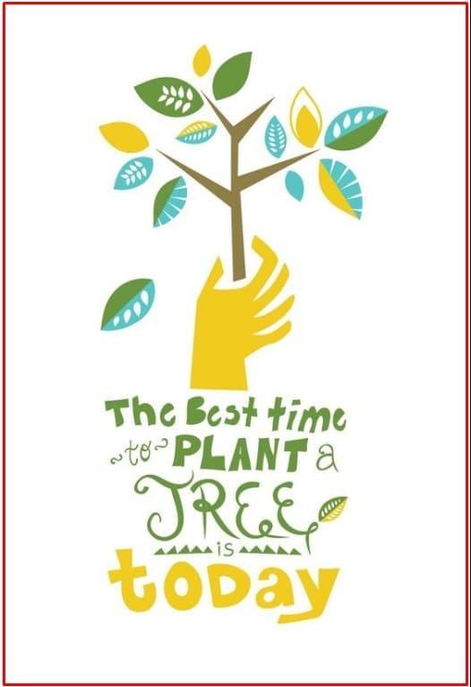 200 Contoh Gambar Poster Dan Slogan Bertema Lingkungan Hidup