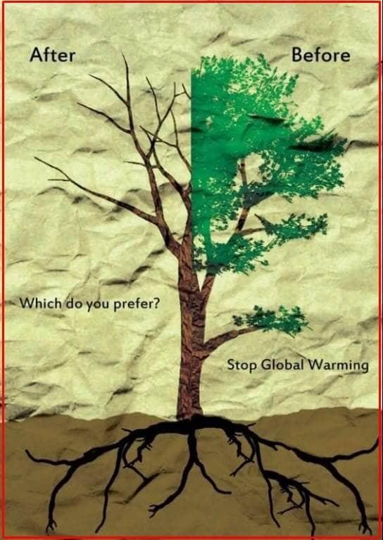 poster lingkungan hidup bersih